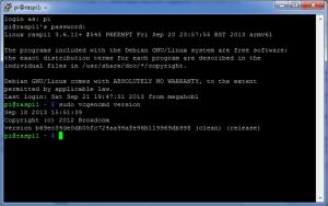 Raspberry Firmware Update