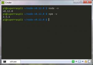 Node.js Version